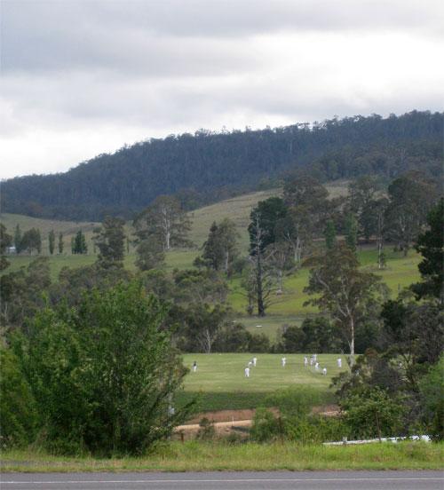 the-cricket-match