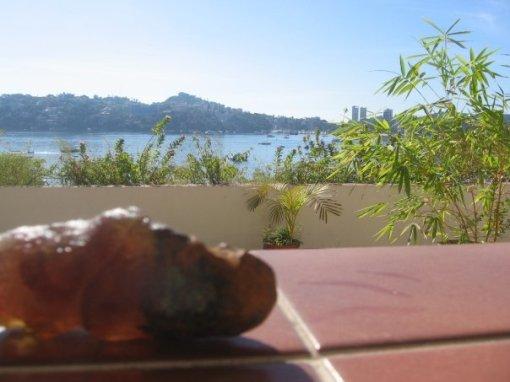 the-poo-enjoying-the-acapulco-sun