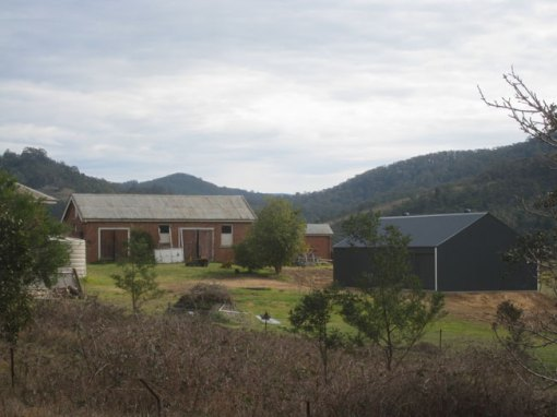 a-nestle-of-sheds