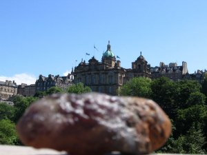 Poo-in-front-of-the-Royal-Bank of Scotland