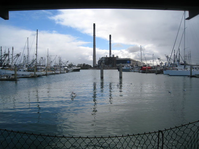 View from the fish stalls at the Port Adelaide market