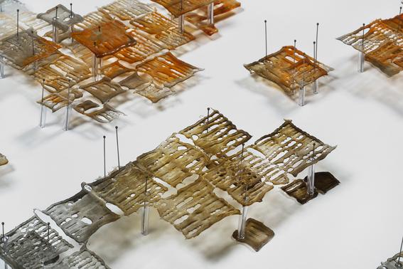 Hannah Gason, Ground Plan, glass, pins. Australian National University.