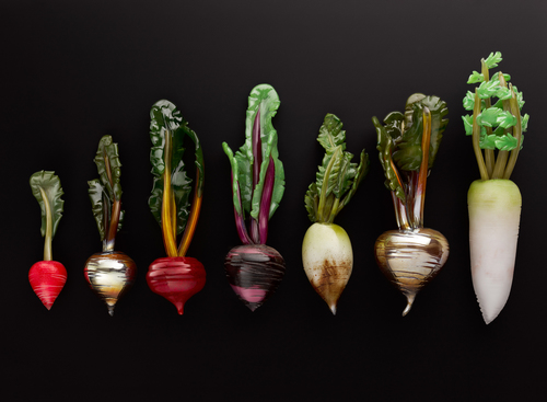 Root_Vegetables_11_Web
